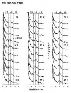 呼吸法時の脳波解析.jpg
